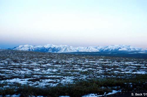 arctic_tundra