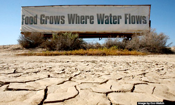 Agriculture industry suffers as drought continues in California. Image Credit: Eco Watch